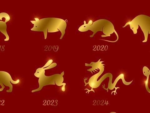 Chinese New Year Animals