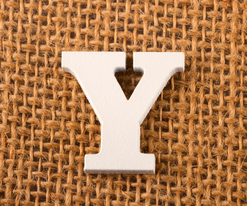 The Letter 'Y' Quiz