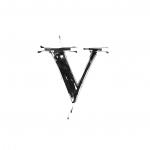 The Letter 'V' Quiz