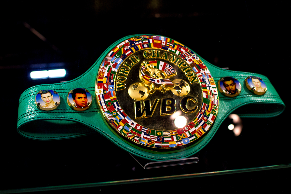 Deontay Wilder to Fight Tyson Fury Again?